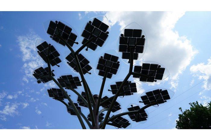 В столице установили два дерева с солнечными батареями (ФОТО)