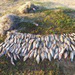 Пограничники оштрафовали 8 рыбаков за незаконную ловлю (ФОТО)