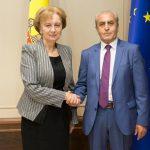 Гречаный провела встречу с послом Армении в Молдове