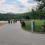 По инициативе социалистов в столичных парках появились специальные урны для экскрементов собак (ФОТО)