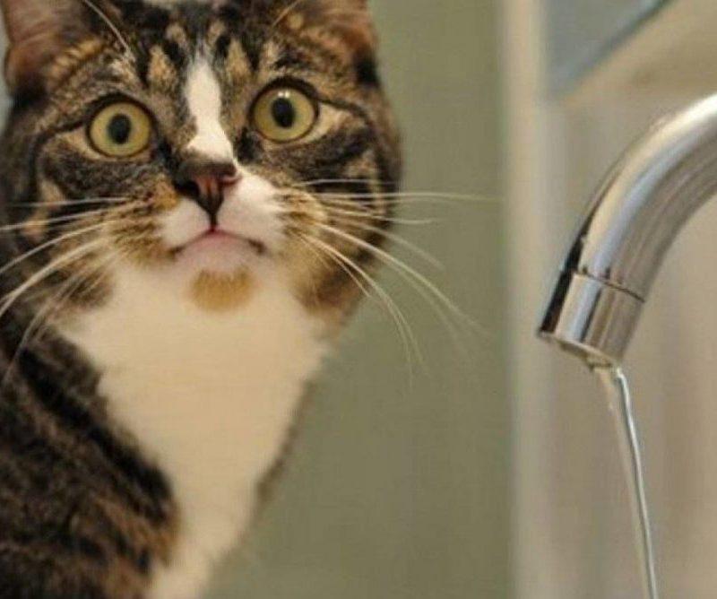 Отключения воды запланированы по нескольким столичным адресам