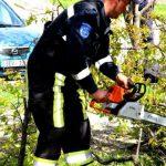 Упавшие деревья, обесточенные села, поврежденные жилые дома - результаты разгула стихии на севере Молдовы