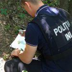 Торговавший наркотиками в Telegram главарь ОПГ был задержан правоохранителями (ФОТО, ВИДЕО)