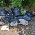 Молдаванин получил в Италии внушительный штраф за выброс мусора в неположенном месте
