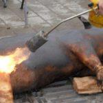 Житель Дрокии получил ожоги при опалке свиньи