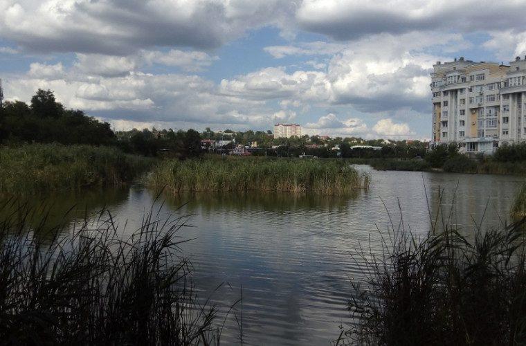 Стараниями социалистов озеро и сквер на Албишоаре будут благоустроены
