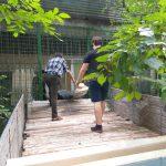 Стараниями социалистов Управление соцобеспечения сектора Ботаника готово к приёму граждан (ФОТО)