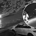 ДТП на Буюканах: момент наезда на пешехода попал на видео