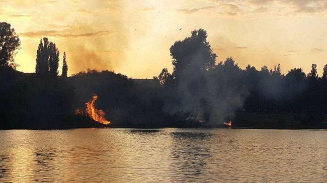 Пожар в парке «Ла Извор»: огонь тушили два пожарных расчёта (ФОТО, ВИДЕО)