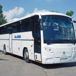 """Проверки пассажироперевозчиков: в Молдове стартует спецоперация """"Автобус"""""""