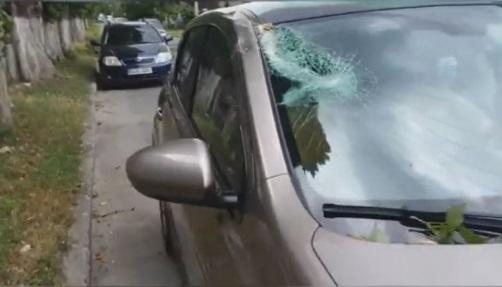 ЧП на дороге: упавшая ветка разбила лобовое стекло автомобиля (ВИДЕО)