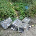 На молдо-румынской границе обнаружили контрабандные сигареты на сотни тысяч леев