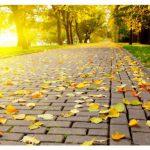 На этой неделе в Молдове будет тепло и солнечно
