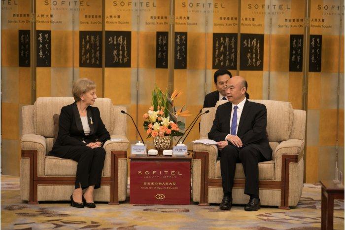 Зинаида Гречаный встретилась в Китае с главой провинции Шэньси