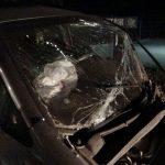 ДТП в Бендерах: водитель госпитализирован после удара в дерево