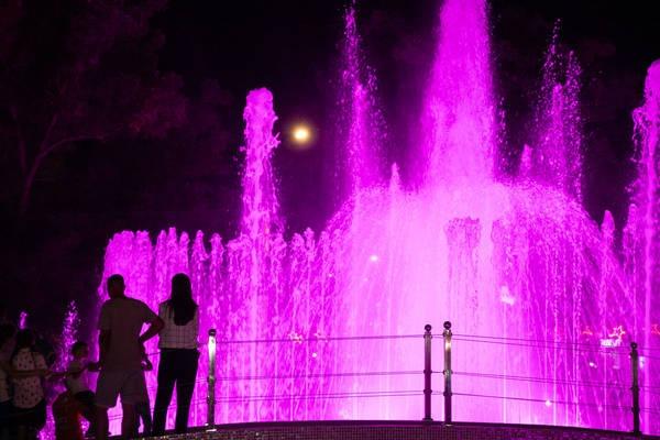 В центре Тирасполя по выходным будет играть живая музыка