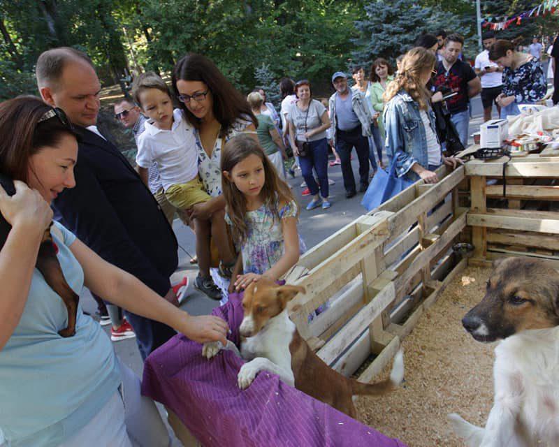 Чебан поддержал организаторов фестиваля в помощь бездомным животным (ФОТО)