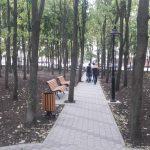 Стараниями социалистов в Кишинёве благоустроен ещё один сквер (ФОТО)