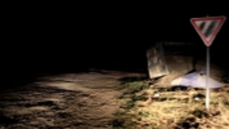 В Леова перевернулся грузовик, перевозивший семена подсолнечника (ВИДЕО)