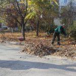 Столичные власти призывают жителей Кишинева и экономических агентов к чистоте