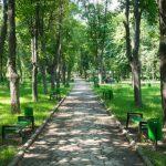Сегодня состоится открытие обновленного по инициативе социалистов парка «Алунелул» (ВИДЕО)