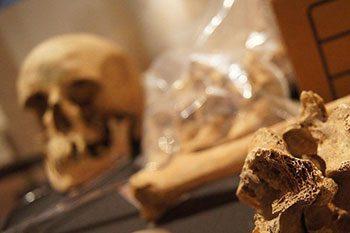 Страшная находка в Слободзее: рабочие электросетей обнаружили скелет человека