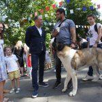 Чебан: Мунсовет утвердил новый Регламент по домашним и бездомным животным