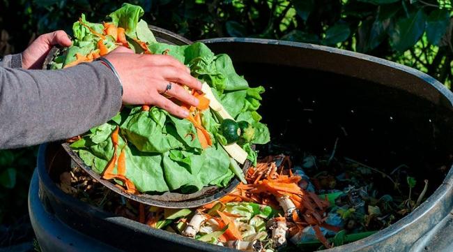 НАБПП: Сотни килограммов продуктов питания были изъяты из продажи в этом году