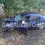 ДТП в Чадыр-Лунге: автомобиль врезался в дерево (ФОТО)