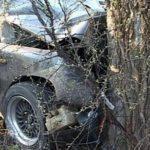 Два жителя Гагаузии погибли в жутком ДТП в Болгарии