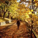 В последующие дни в Молдове снова потеплеет