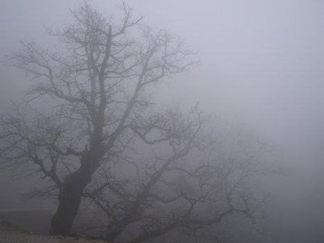 """""""Жёлтый код"""" из-за тумана будет действовать и завтра"""