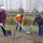 Социалисты посадили сотни деревьев в Национальный день озеленения