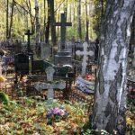 В Петербурге на кладбище наши труп мужчины из Молдовы