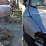Два человека пострадали в результате серьёзного ДТП: автомобиль, в котором они находились, врезался в столб