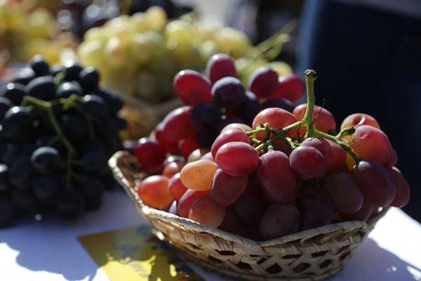 В Бендерской крепости пройдет фестиваль вина и винограда