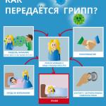 Специалисты Роспотребнадзора рассказали, как уберечь себя от гриппа