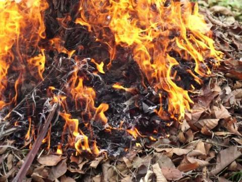 В ГИЧС напомнили гражданам о необходимости соблюдать правила пожарной безопасности