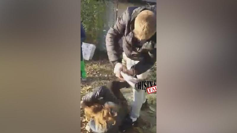 Житель Калараша жестоко избил несовершеннолетнюю за кражу кроссовок (ВИДЕО 18+)
