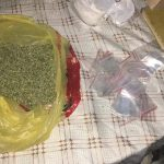 Выращивал коноплю для продажи: в Сороках задержали члена преступной группы (ФОТО, ВИДЕО)