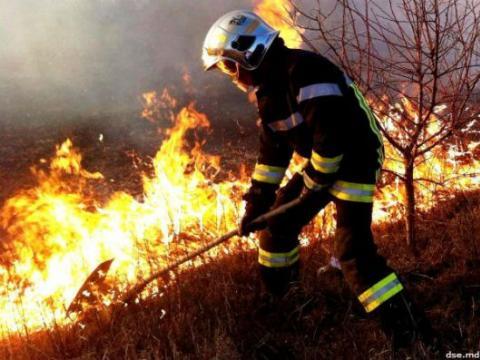 Детали пожара в Унгенах: огонь уничтожил 100 га сухой травы (ФОТО, ВИДЕО)
