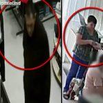 Столичная полиция просит помощи граждан в поиске двух подозреваемых в кражах (ВИДЕО)