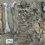 Человеческие останки обнаружил на своём участке житель Слободзеи