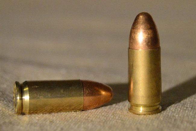 Тираспольчанин обнаружил в мусорном баке девять патронов и одну гильзу