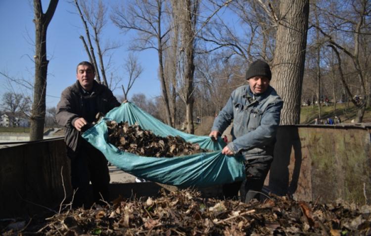 Опавшую листву вывезут из столицы в течение недели