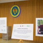 В Молдове проживают более 176 тысяч граждан с ограниченными возможностями