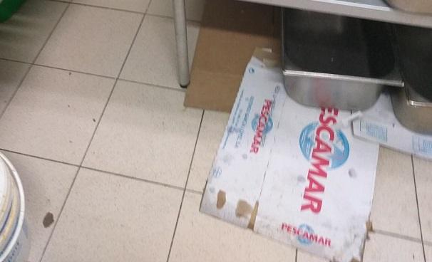 Инспекторы НАБПП «нагрянули» с проверками в столичные маркеты (ФОТО)