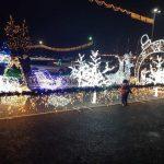 Сегодня в центре столицы состоится открытие рождественской ярмарки (ФОТО)