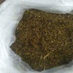 Полицейские задержали члена наркогруппы и изъяли марихуану на 200 000 леев (ФОТО, ВИДЕО)