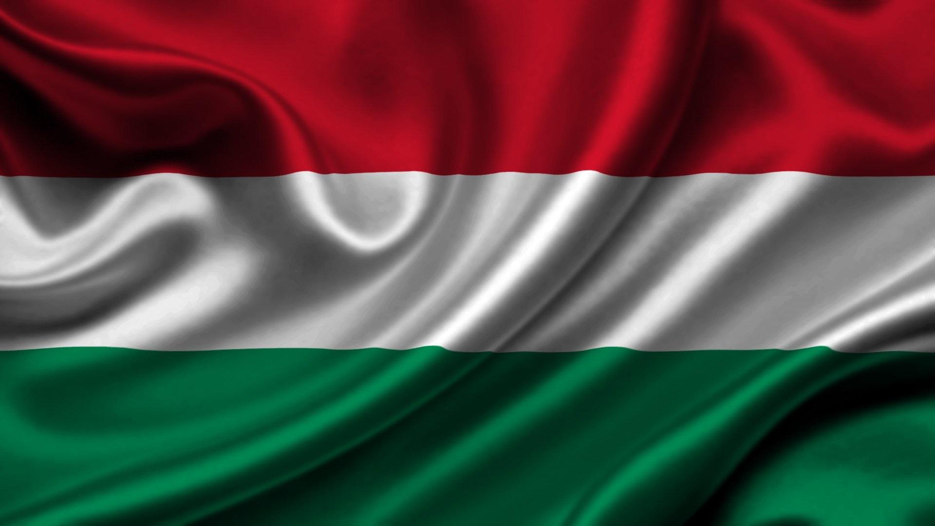 Гречаный провела встречу с президентом Венгрии